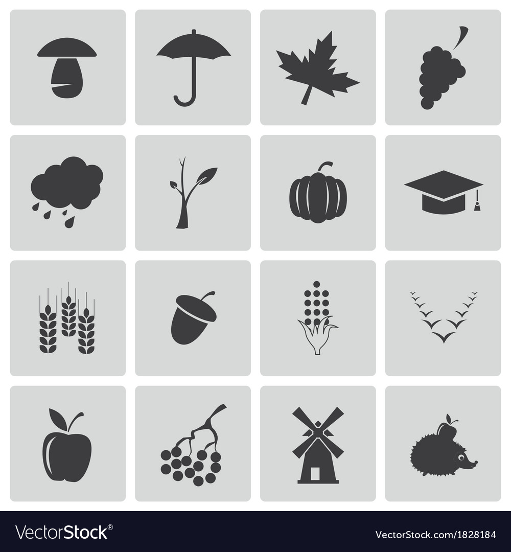 Black autumn icons set vector | Price: 1 Credit (USD $1)
