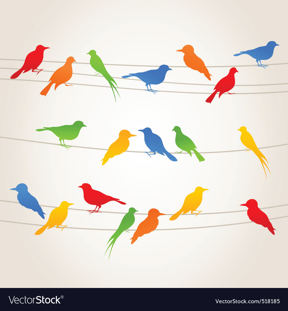 Birds on a wire vector | Price: 1 Credit (USD $1)