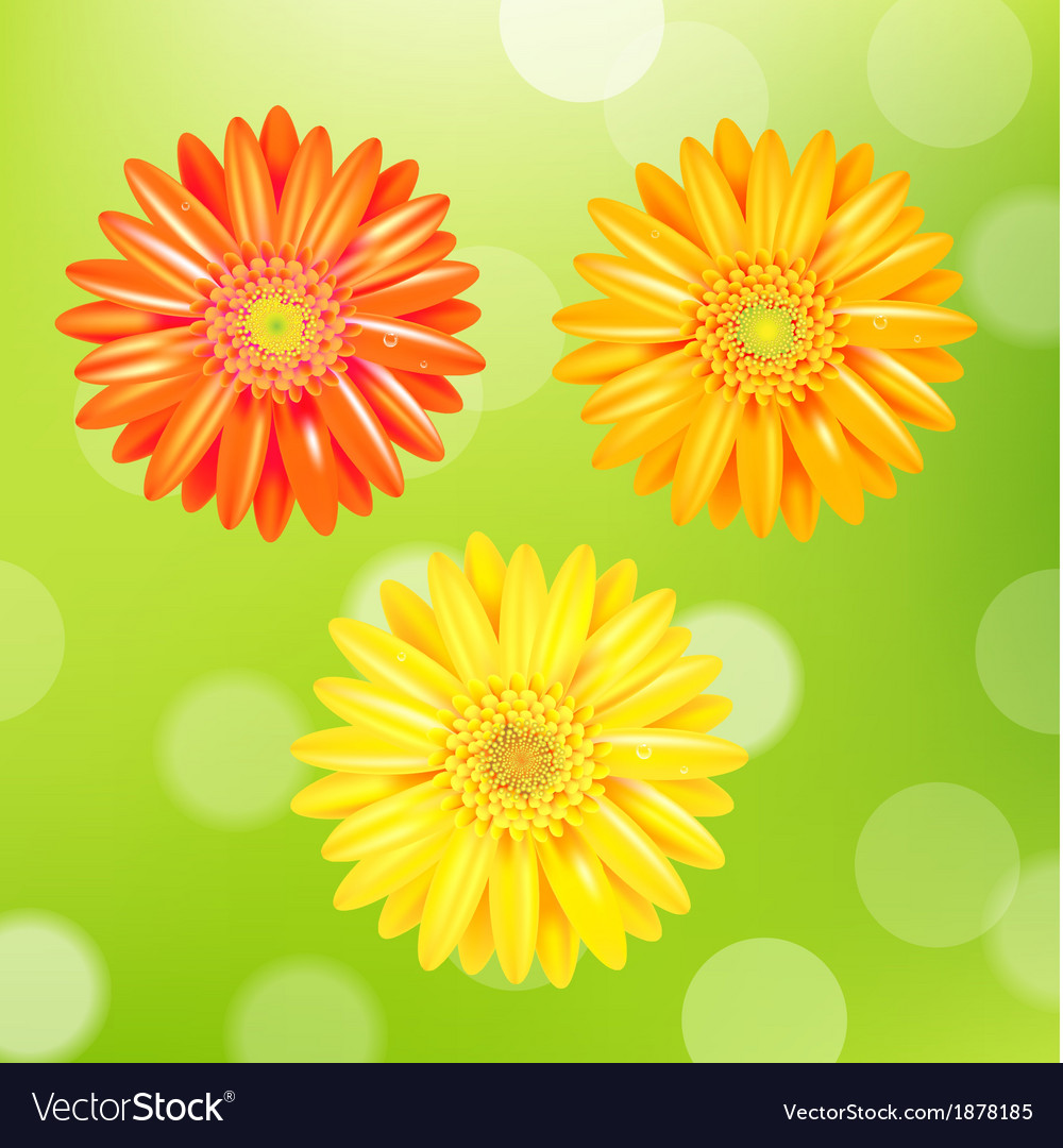 Color gerber set vector   Price: 1 Credit (USD $1)