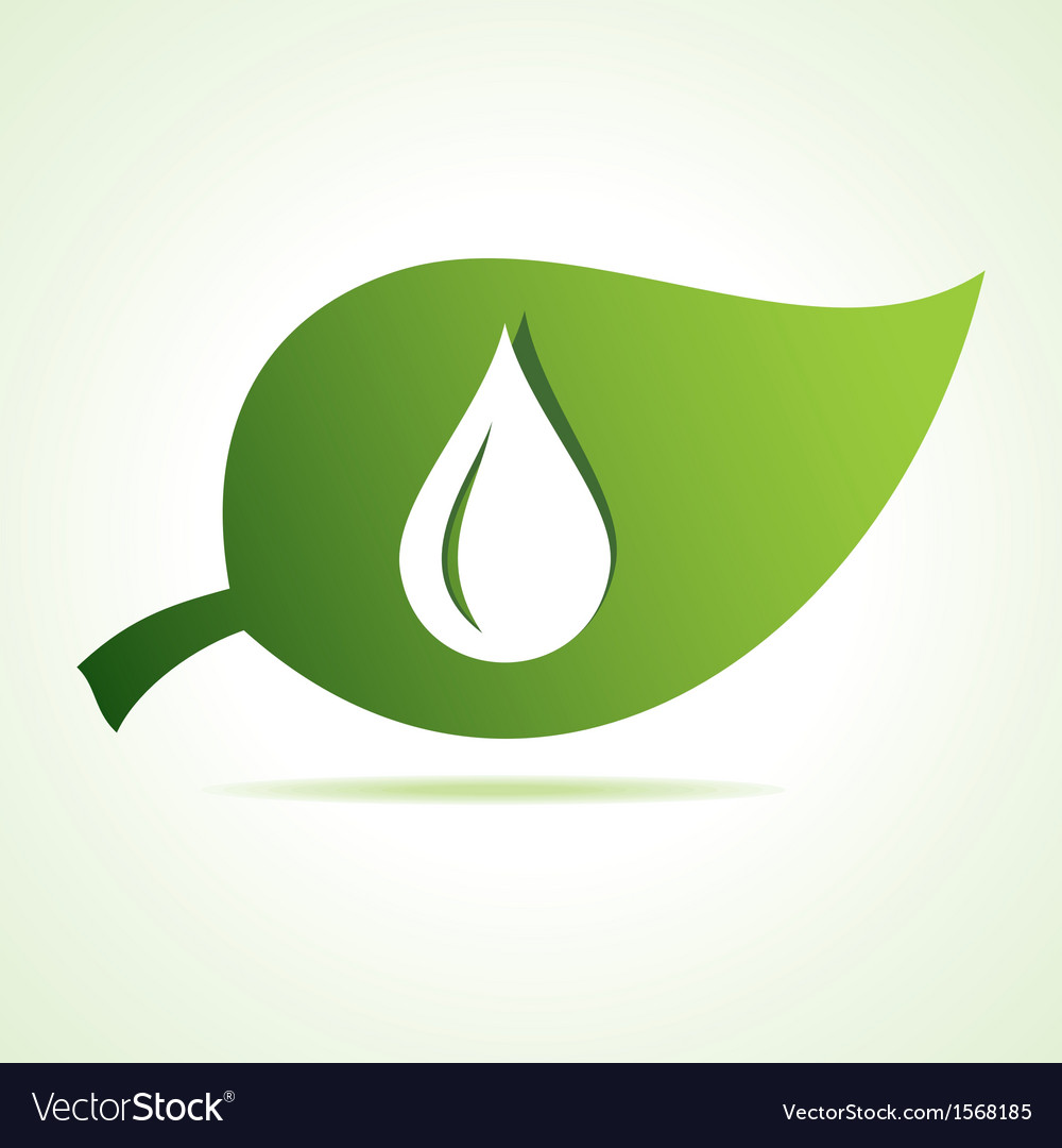 Water drop icon at leaf vector | Price: 1 Credit (USD $1)