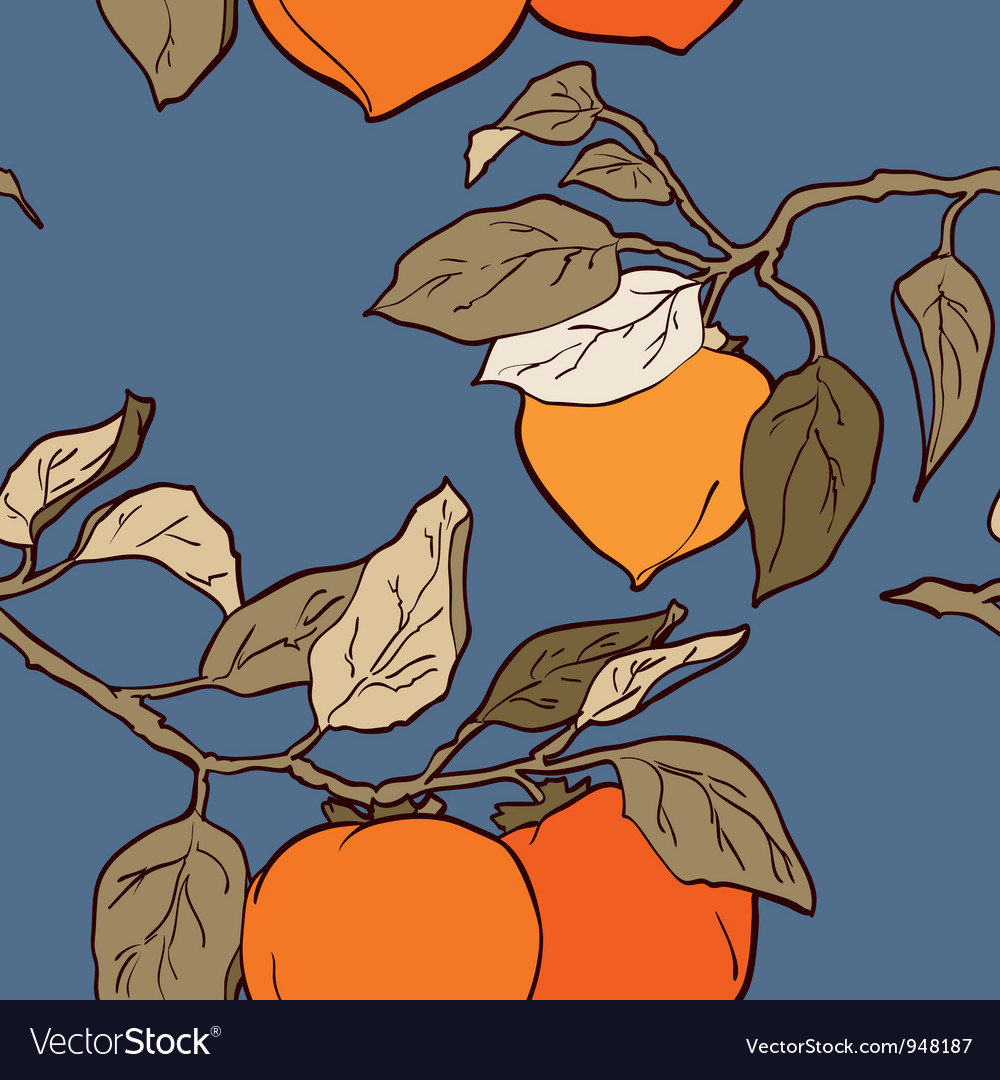 Persimmon seamless pattern vector | Price: 1 Credit (USD $1)