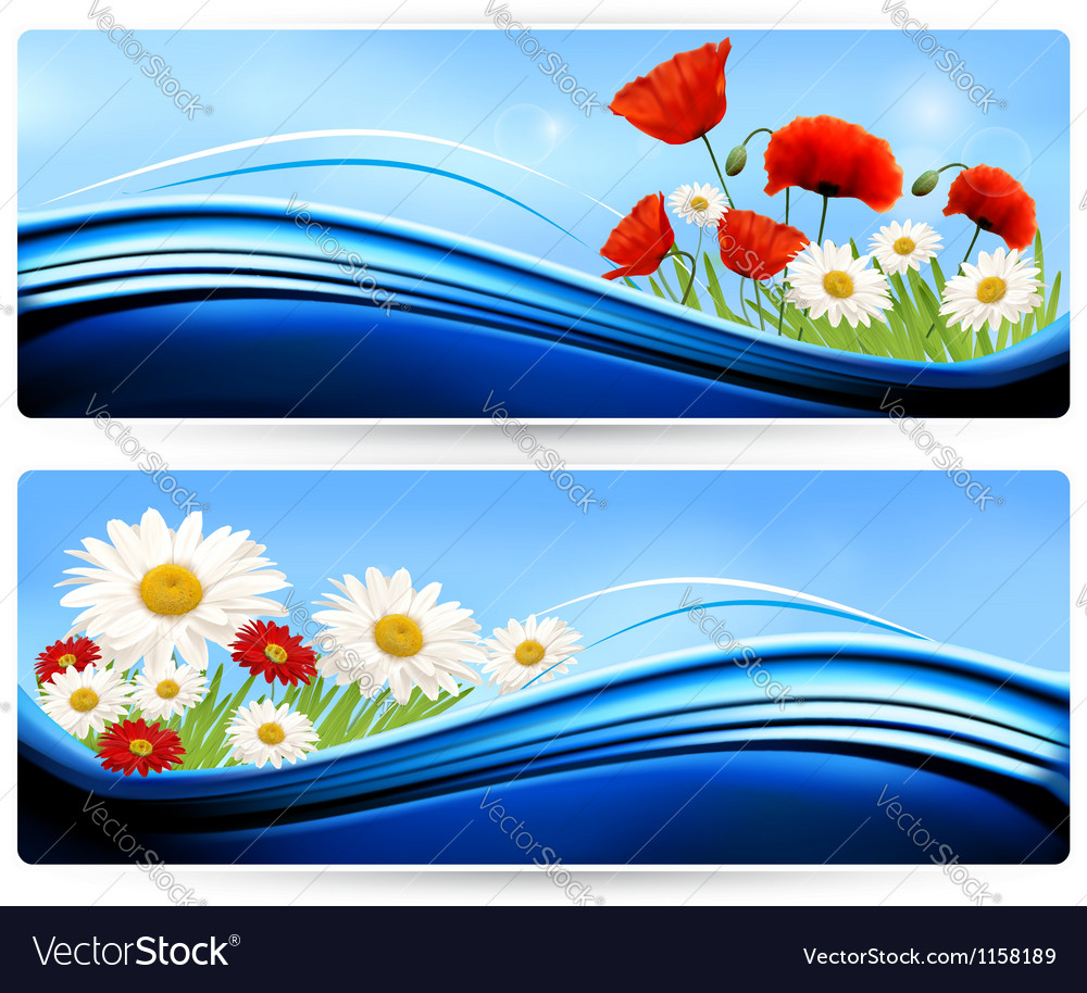 Nature banners with color flowers vector | Price: 1 Credit (USD $1)
