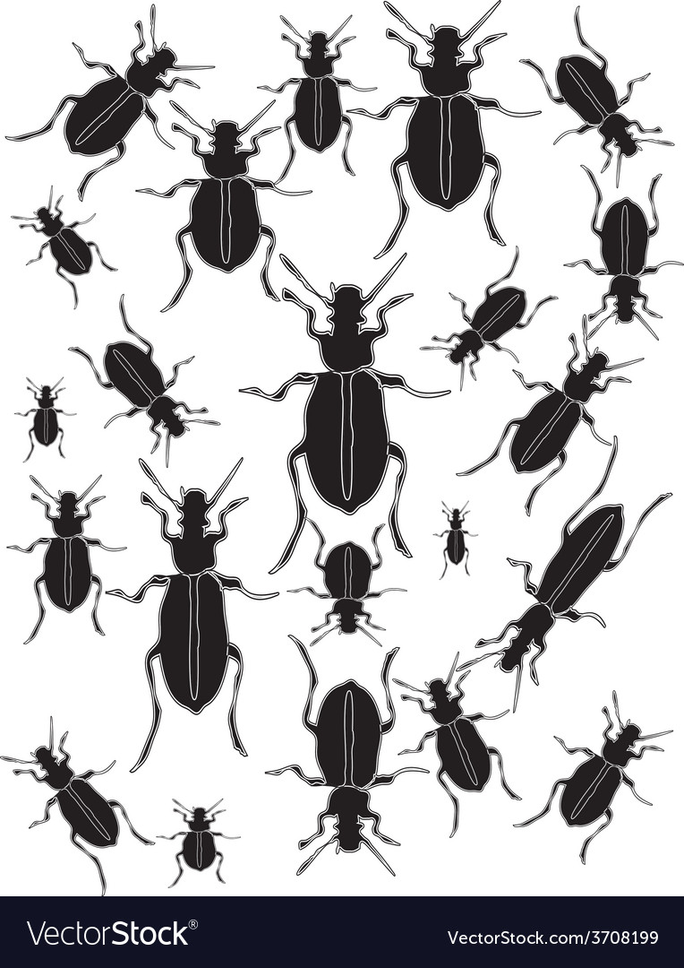 Set bugs silhouette vector | Price: 1 Credit (USD $1)