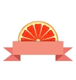 Grapefruit slice with paper banner vector