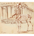 An hand drawn centaur vector