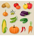 Sticker icon set of fresh ripe stylized vegetables vector