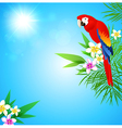 Summer tropical background with red parrot vector