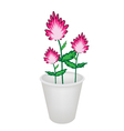 Three beautiful pink flowers in a flowerpot vector