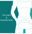 Thin waist and beautiful belly vector