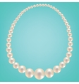 Pearl necklace on turquoise background vector