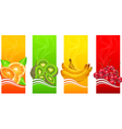 Four coloured fruits background vector