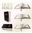 Set of holy bibles vector
