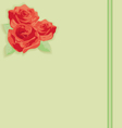 Flowers a rose on paper vector