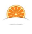 Orange with paper banner vector