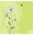 Ladybug on chamomile flower and grunge green grass vector