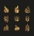 Symbols gold yellow fire on black background vector