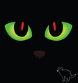 Cat eye in red and green color on black vector