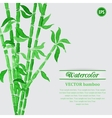 Green watercolor bamboo branches vector