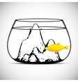 Gold fish isolated on a white vector