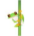 Funny frog cartoon vector