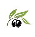 Two ripe black cartoon olives vector