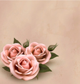 Retro background with beautiful pink roses with vector