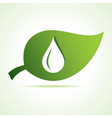 Water drop icon at leaf vector