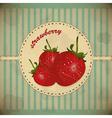 Ripe strawberry card vector