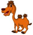Camel cartoon vector