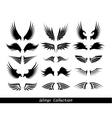 Wings collection set of wings vector