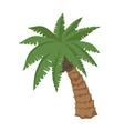 Big palm vector