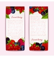Berries banners vertical vector