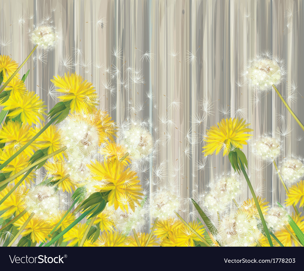 Spring flowers wood vector | Price: 1 Credit (USD $1)