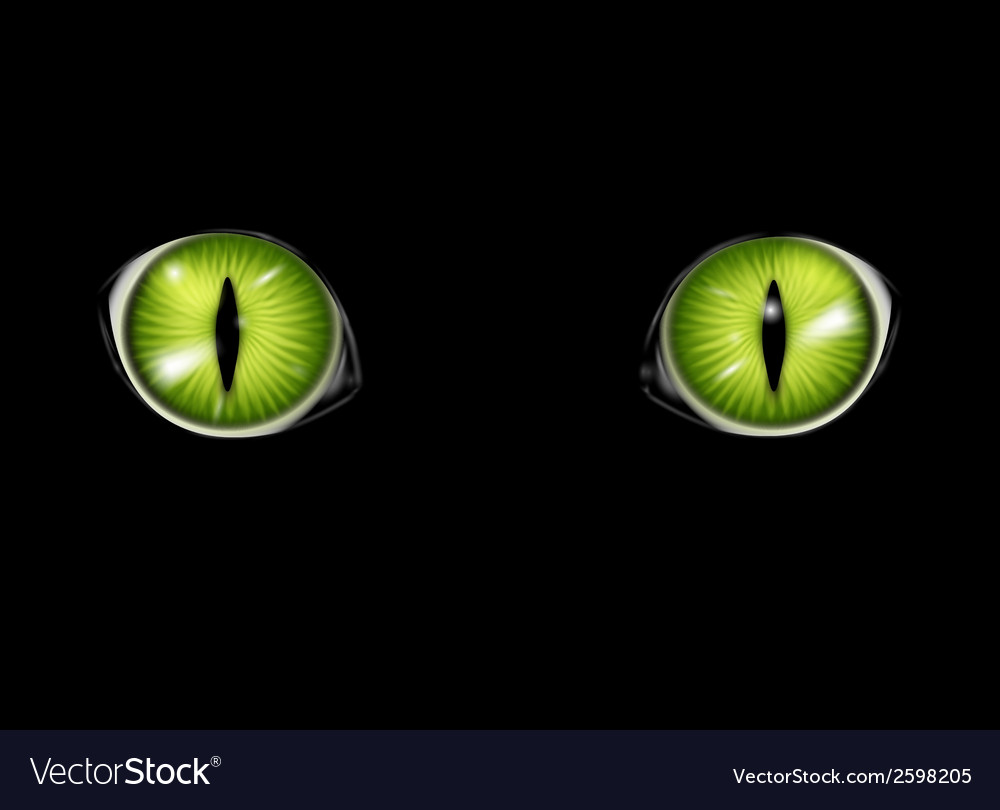 Cats eyes background vector | Price: 1 Credit (USD $1)