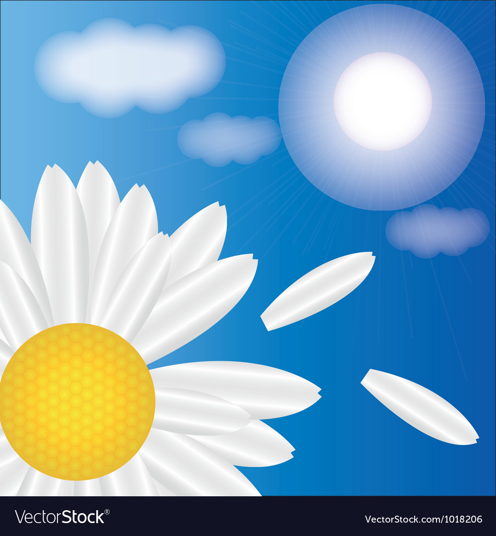 Spring daisies on a background of sky vector | Price: 1 Credit (USD $1)