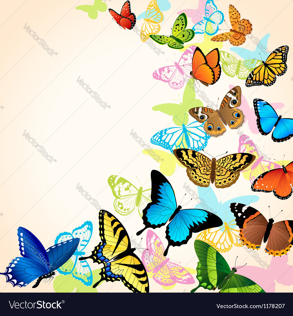 Butterfly card vector | Price: 1 Credit (USD $1)