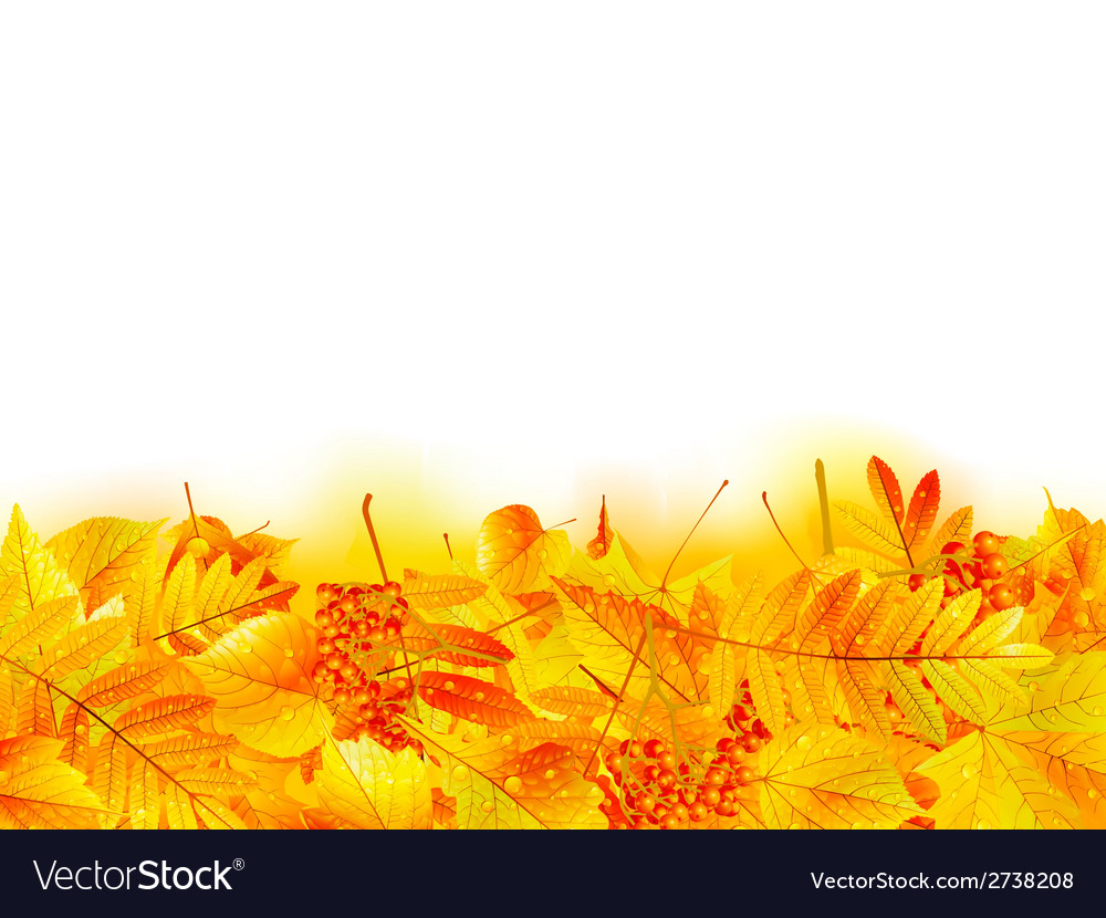 Autumn banner template with maple leaf vector | Price: 1 Credit (USD $1)