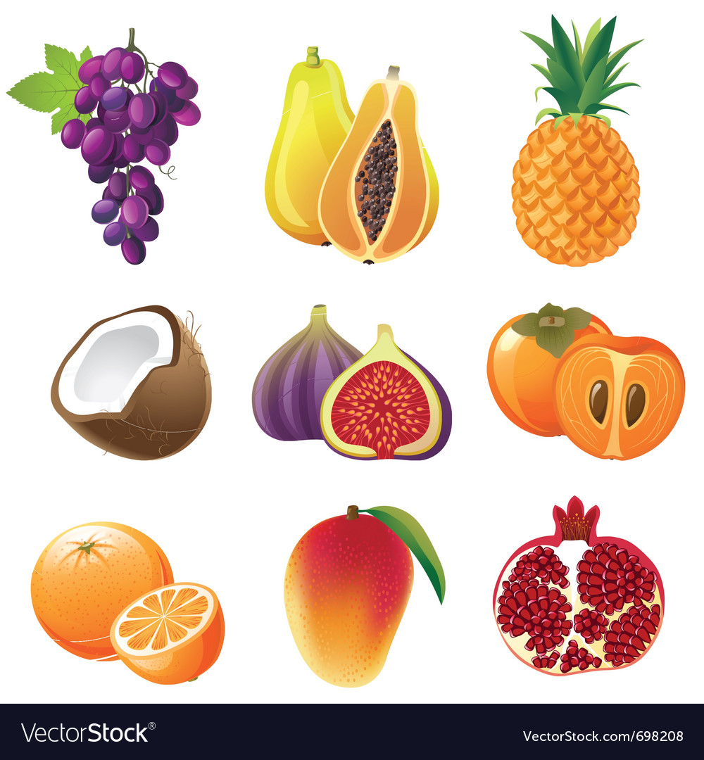 Highly detailed fruits icons set vector | Price: 3 Credit (USD $3)