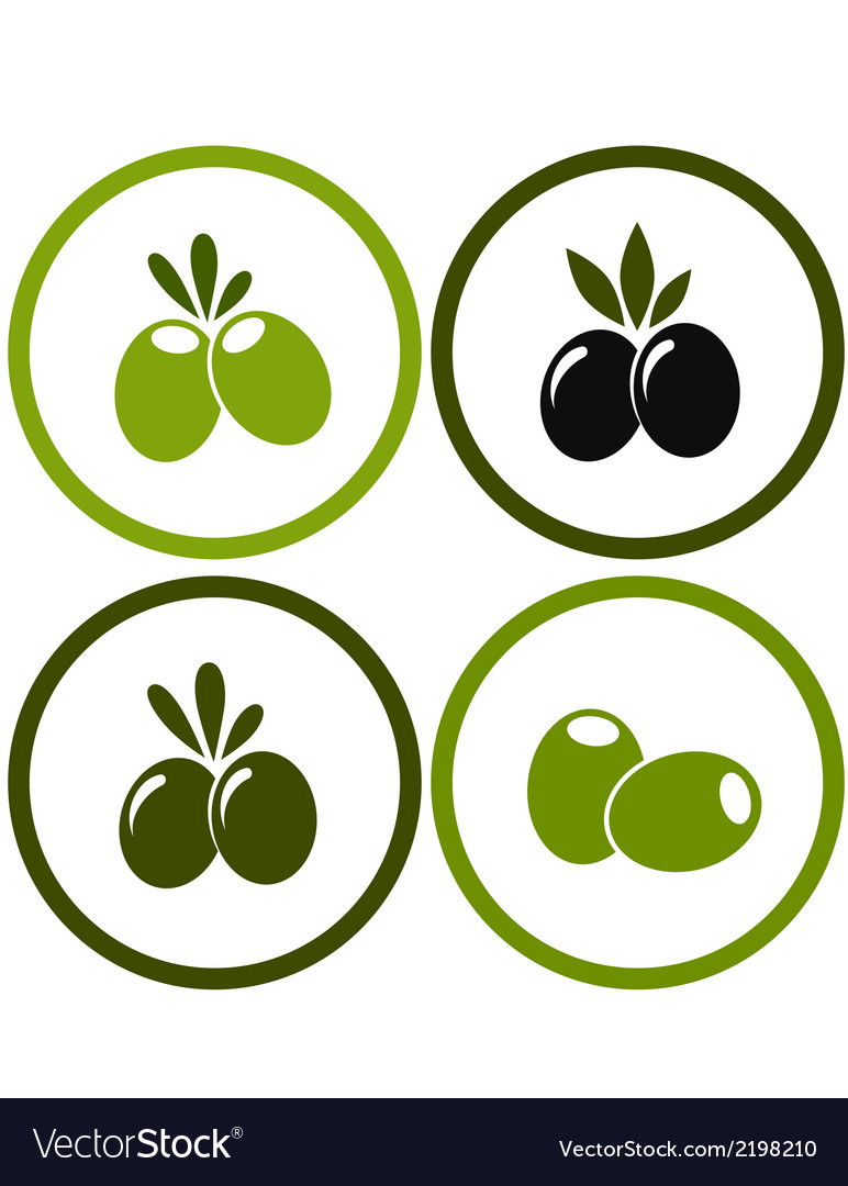 Set of colorful olives vector | Price: 1 Credit (USD $1)