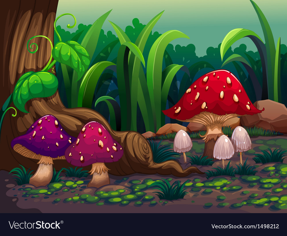 Giant mushrooms in the forest vector | Price: 1 Credit (USD $1)