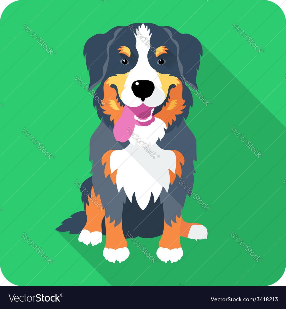 Dog bernese mountain dog sitting icon flat design vector   Price: 1 Credit (USD $1)