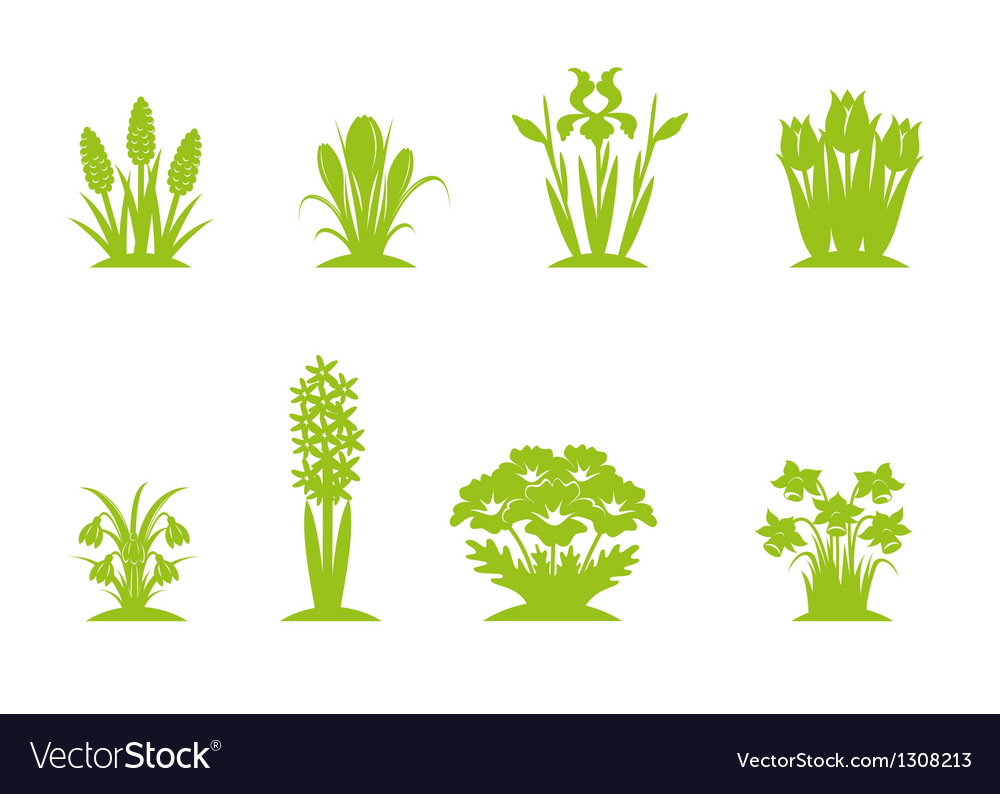 Flowers green vector | Price: 1 Credit (USD $1)