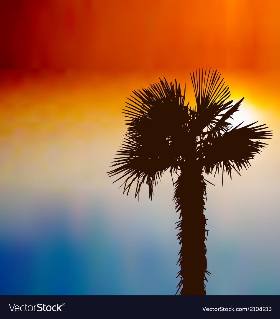 Tropical background with palm tree at sunset vector | Price: 1 Credit (USD $1)
