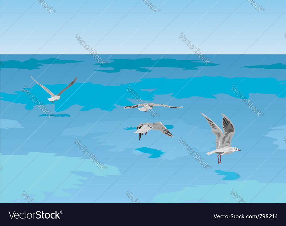 Seagulls over sea vector | Price: 1 Credit (USD $1)