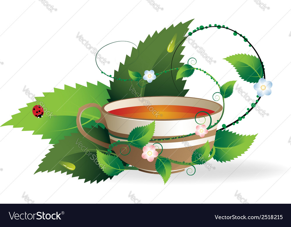 Cup of herbal tea vector | Price: 1 Credit (USD $1)
