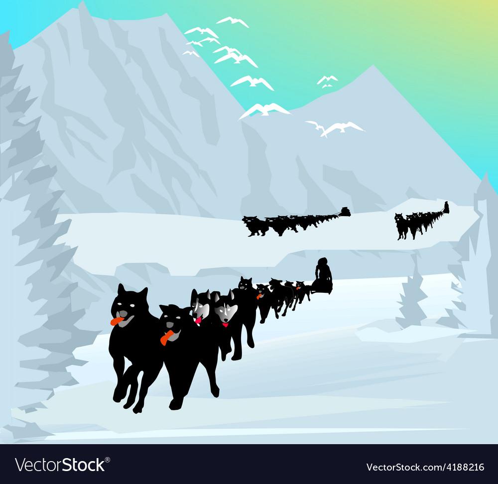 Dog race vector | Price: 1 Credit (USD $1)