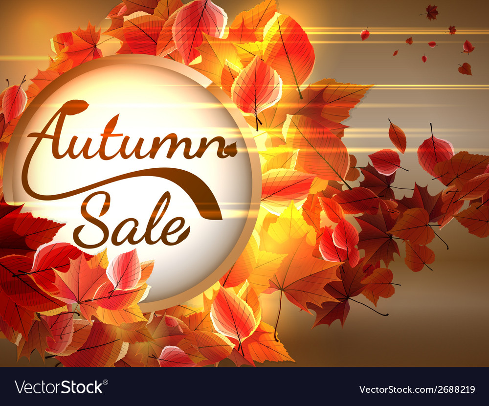 Autumn sale background with copyspace plus eps10 vector | Price: 1 Credit (USD $1)