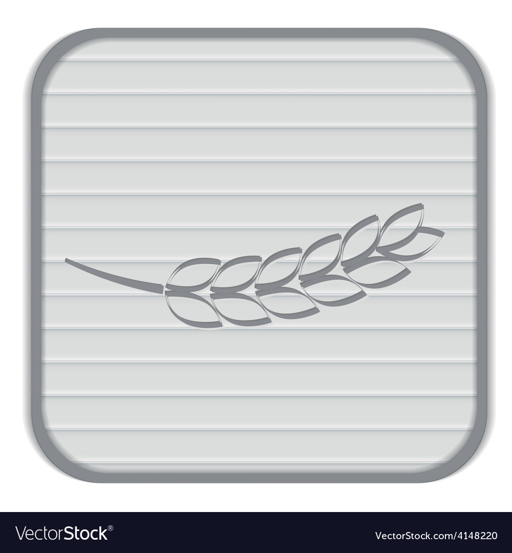Wheat spike ears icon vector   Price: 1 Credit (USD $1)