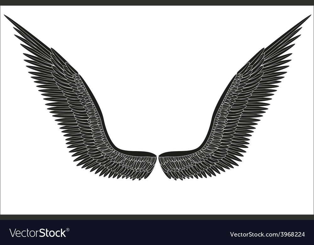 Sketch open black angel wings vector | Price: 1 Credit (USD $1)