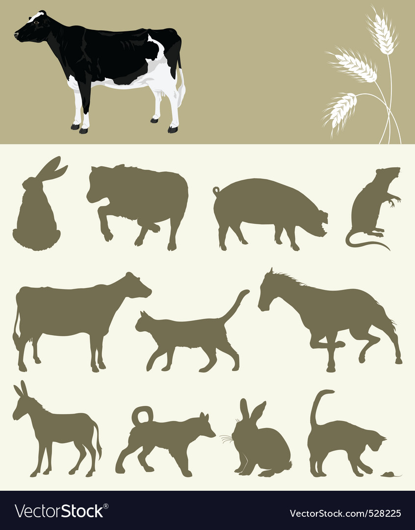 Animal of a farm vector | Price: 1 Credit (USD $1)